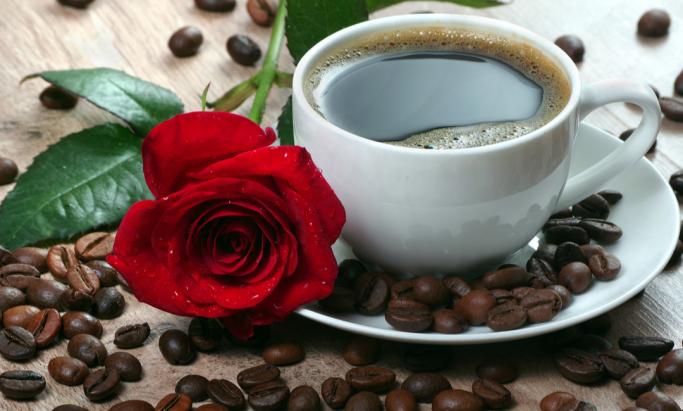 Kaffekopp og rose