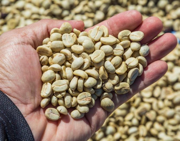 Ubrente kaffebønner